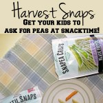 Harvest Snaps for healthy snacking