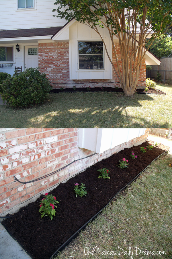 Easy summer garden flower bed | One Mama's Daily Drama --- Look what she does to the front yard with $100 and two hours!