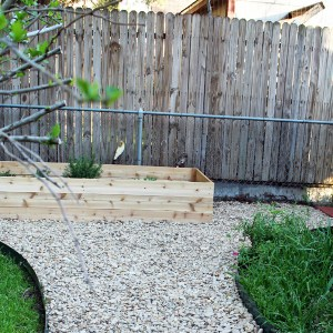 Herb garden and patio project tour