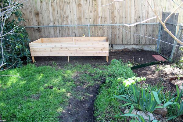 herb-garden7