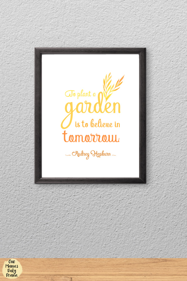 Audrey Hepburn quote about hope/garden