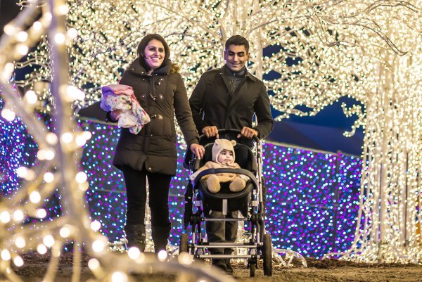 Enchant Christmas / Family holiday fun in DFW!