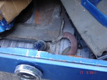 trunk3