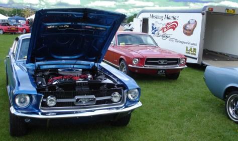 '67 GT390 & Rare T5