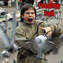 Bird Attack Fail