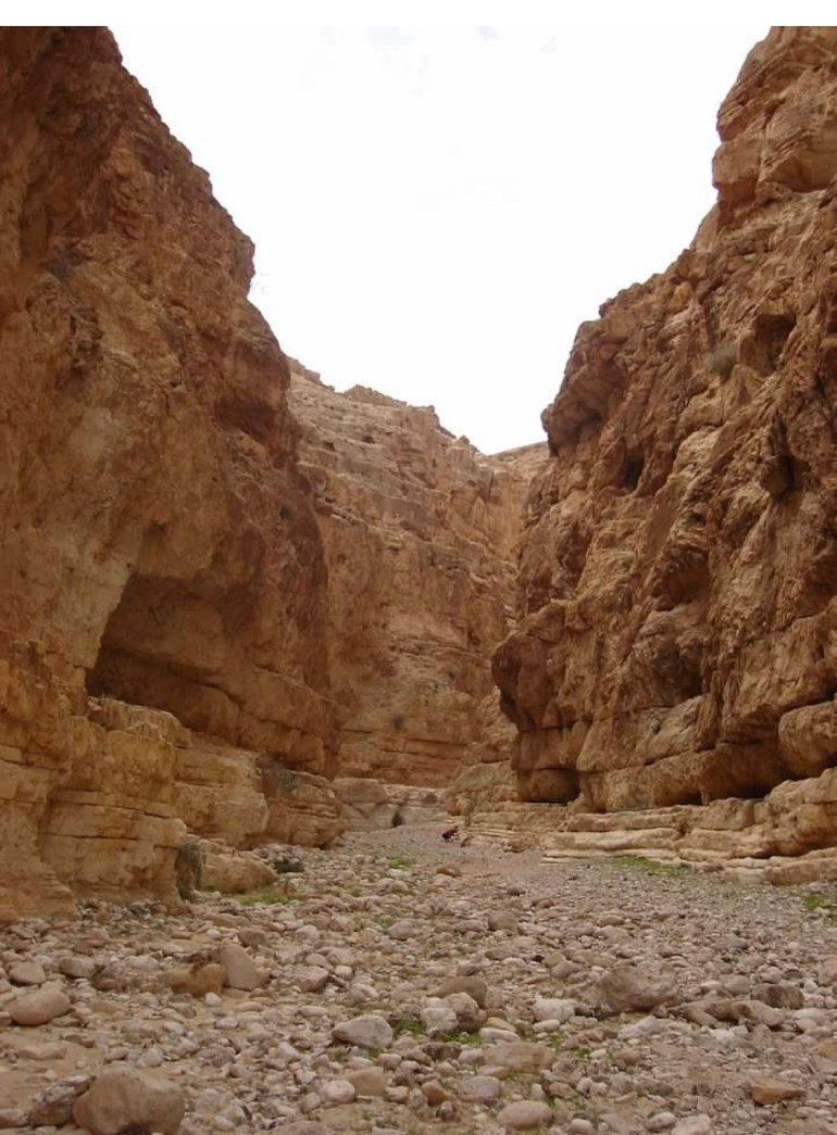 Hiking in the Judean Desert, Spring 2006