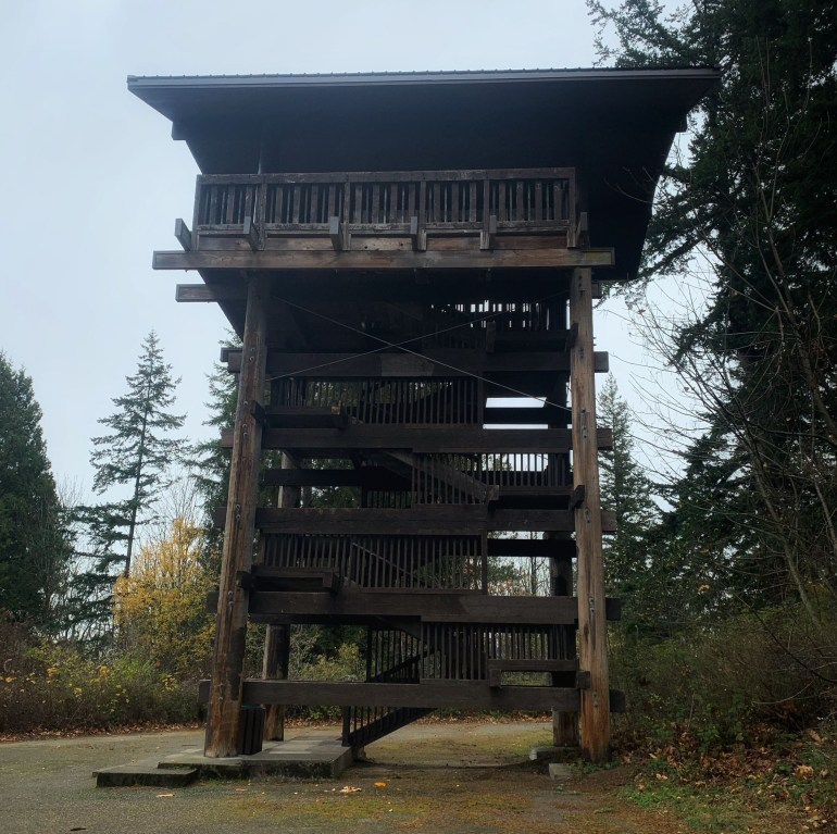 The Sehome Hill Arboretum in Bellingham, Washington