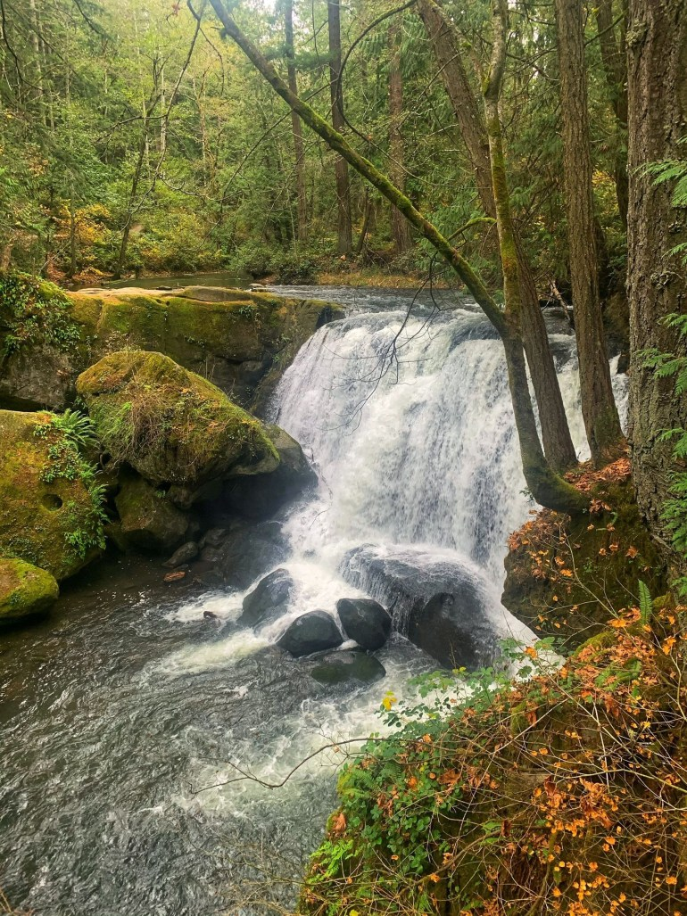 A Colorful Fall Afternoon at Whatcom Falls in Bellingham, Washington
