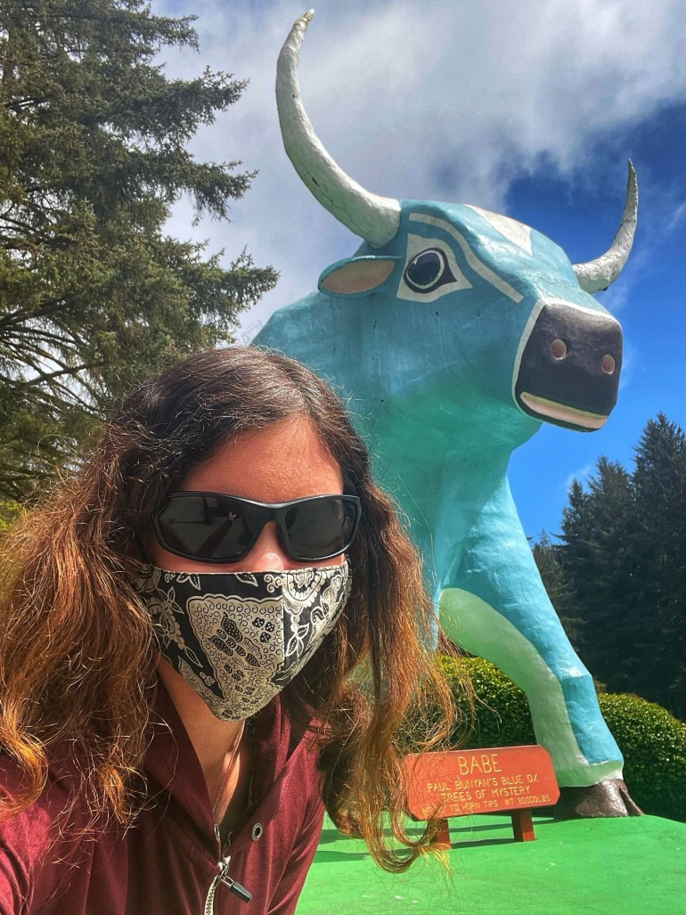 Babe the Blue Ox at Mystery Trees in Klamath, California