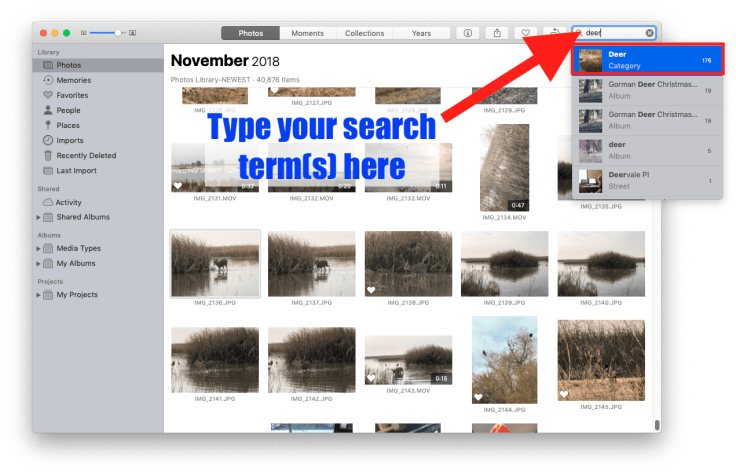 Searching in Photos for Deer