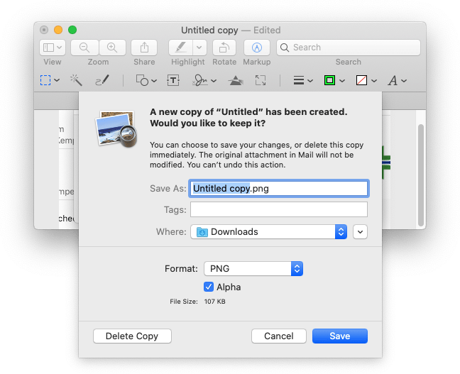 Save a Copy box, with Delete Copy button