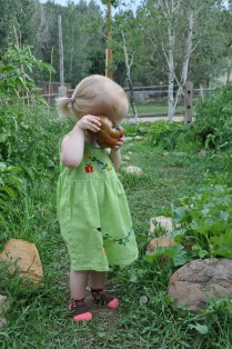 Our sweet girl is actually hugging this tomato!
