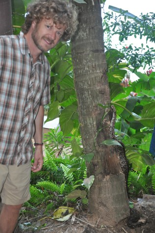 Winter 2014 Job: Seaside Jungle Innkeeper