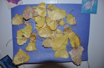 Leaf art (our cottonwood was telling us it needed more water during this HOT summer)
