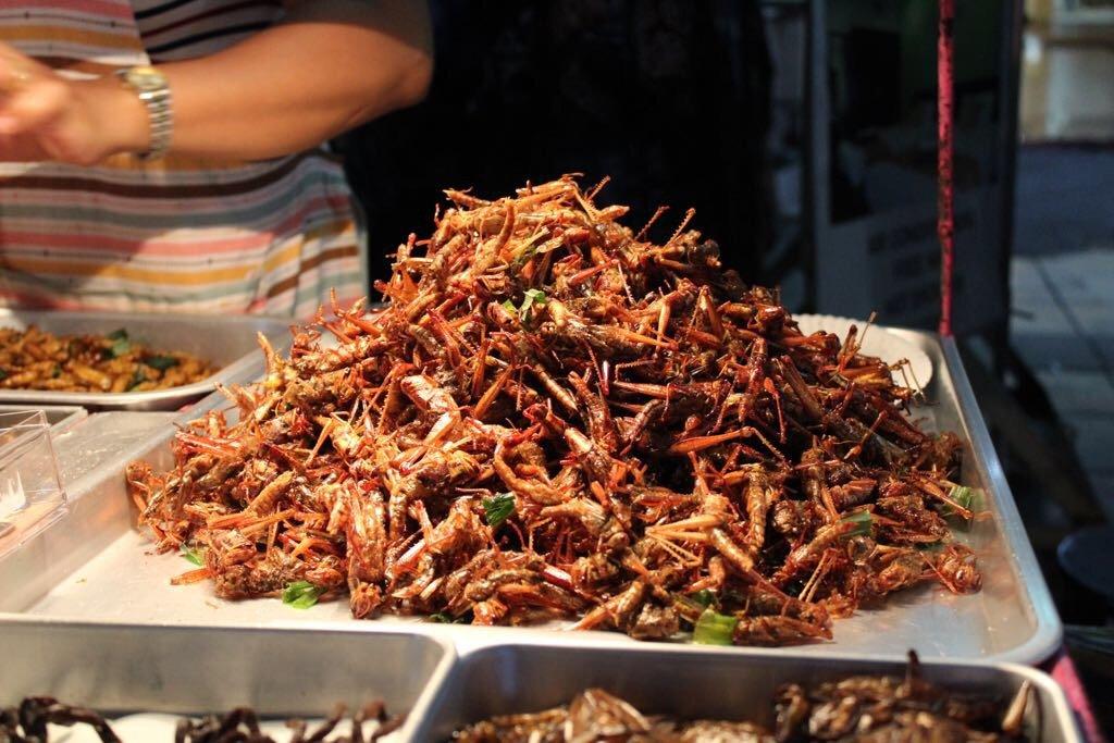 cavallette bangkok cibo