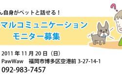 福岡:催眠アニマルコミュニケーションモニター募集