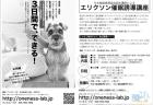 ご感想6:東京催眠誘導講座(アニマルコミュニケーション)ご参加のみなさま