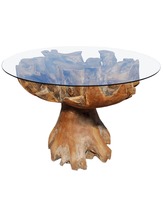 Root Glass Top Table