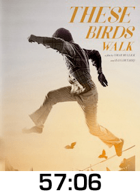 These Birds Walk Blu-ray Review