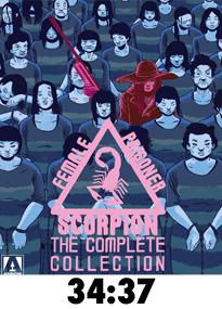 BluFemaleScorpion