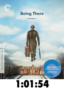 BluBeingThereReview