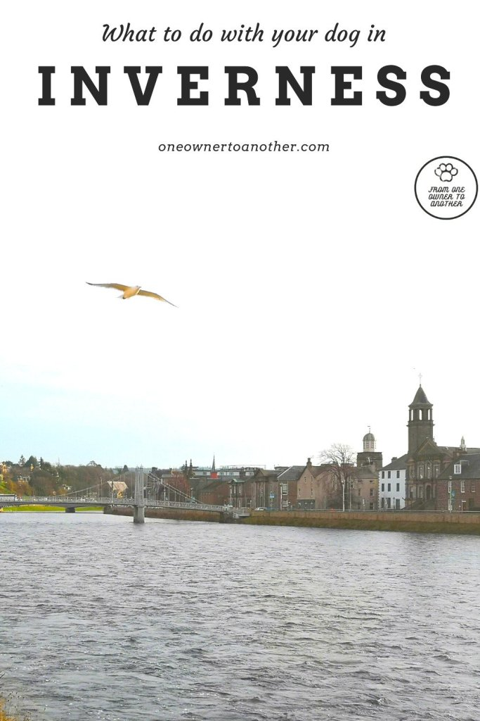 What to do with your dog in Inverness (Scotland) by From One Owner to Another