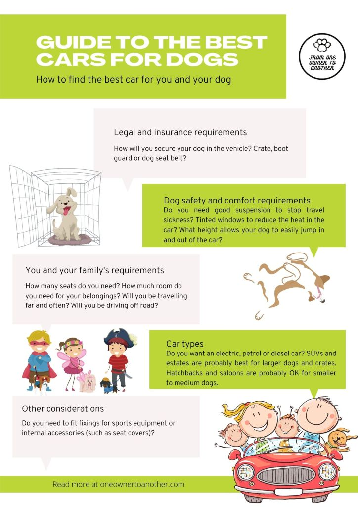 Guide to the best cars for dogs