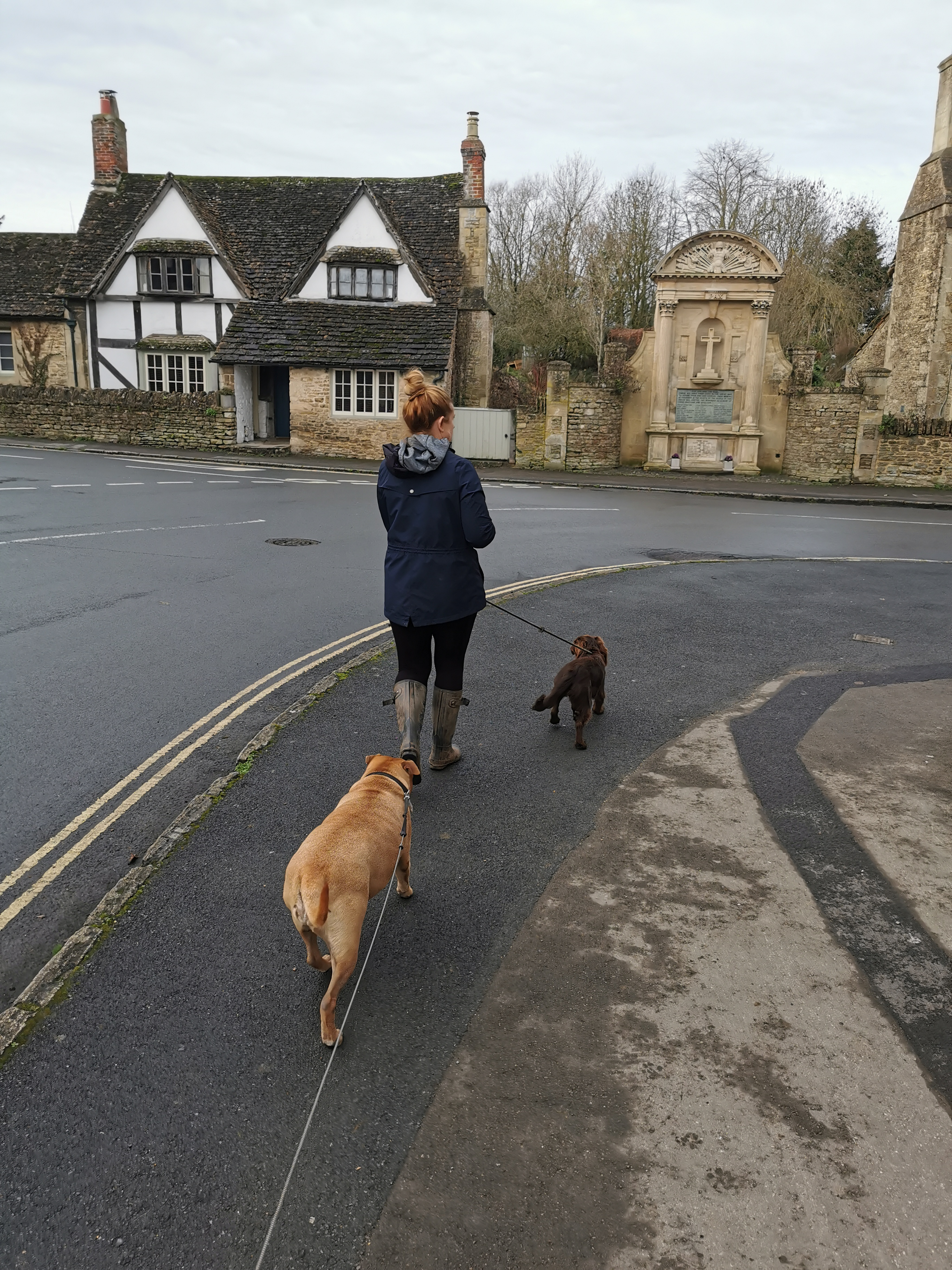 Walking the dogs through Lacock village