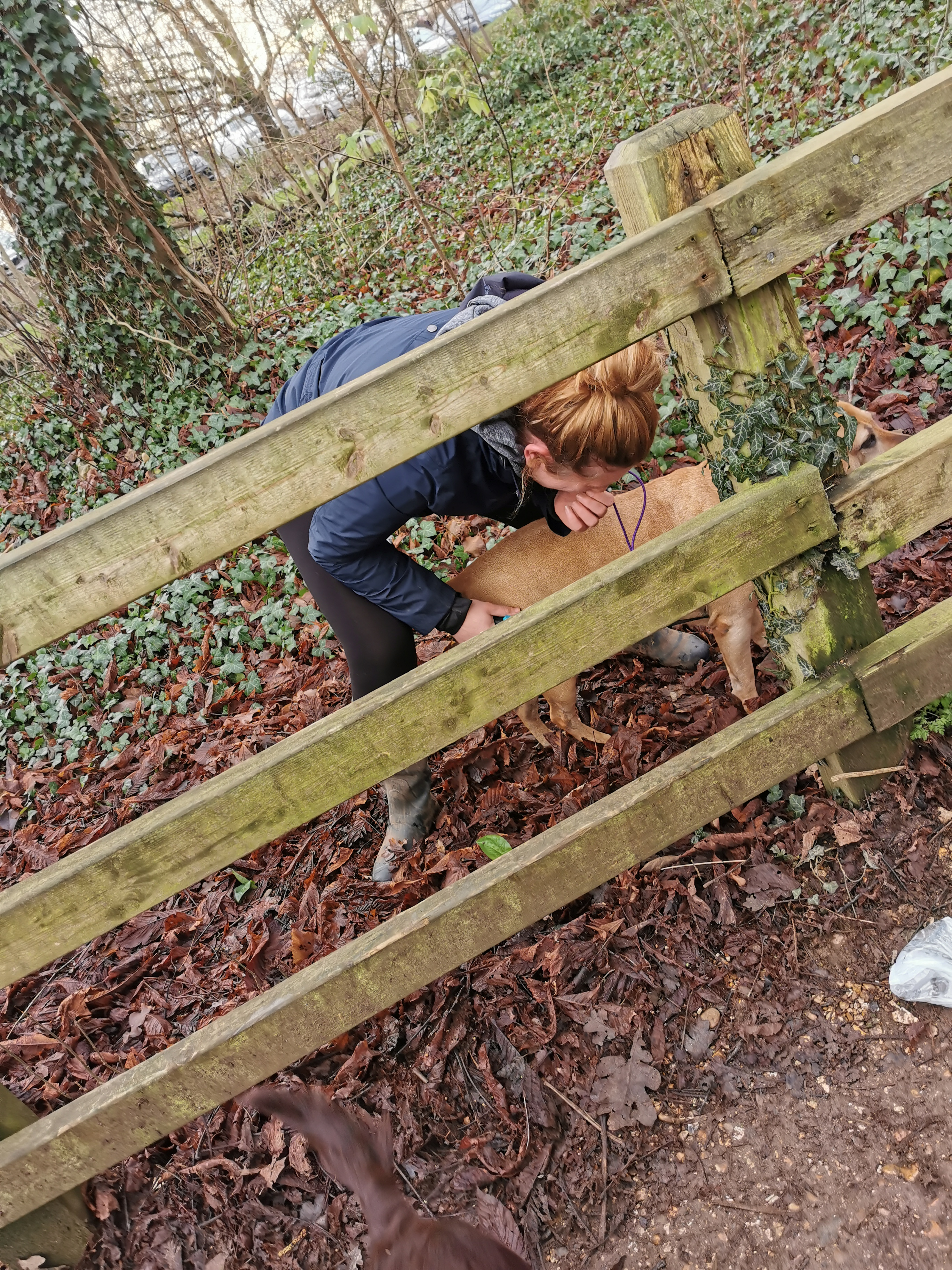 Trying to lift Sash over the fence