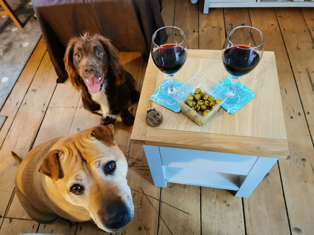 Dogs in dog-friendly Cornwall home