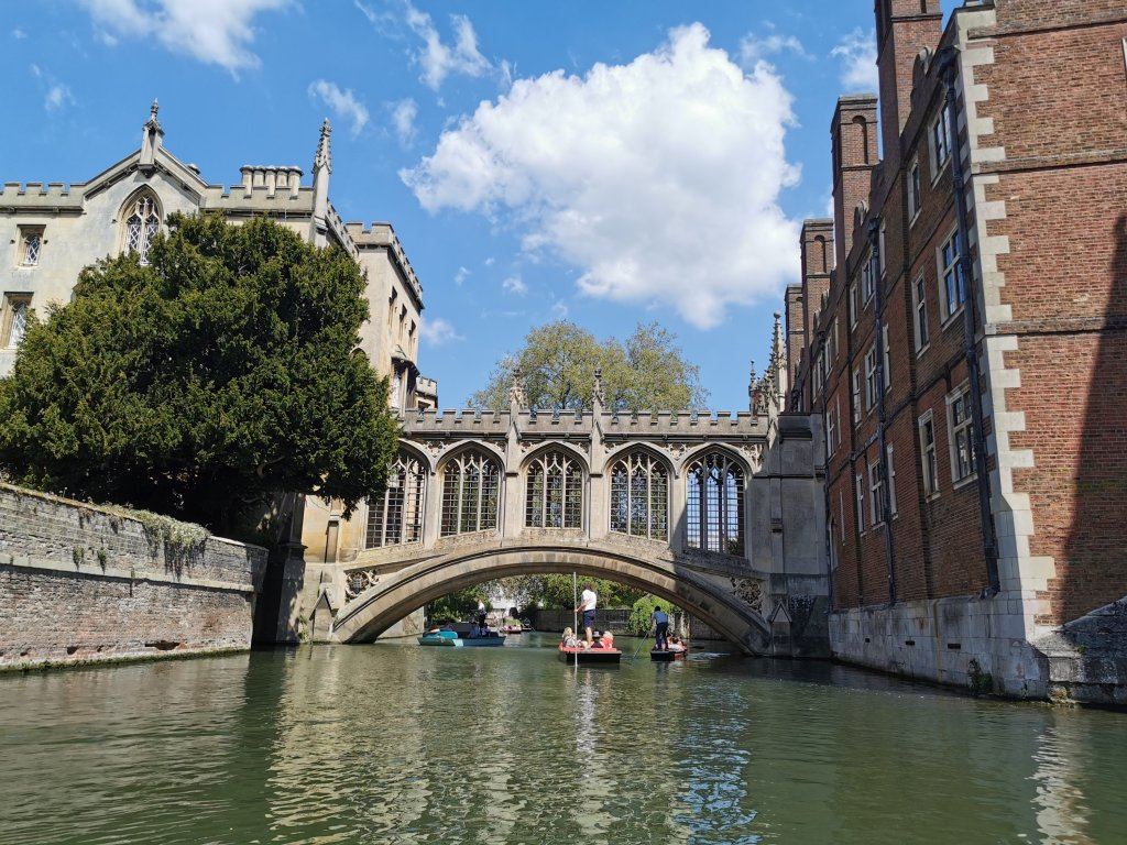 Views from punting in Cambridge