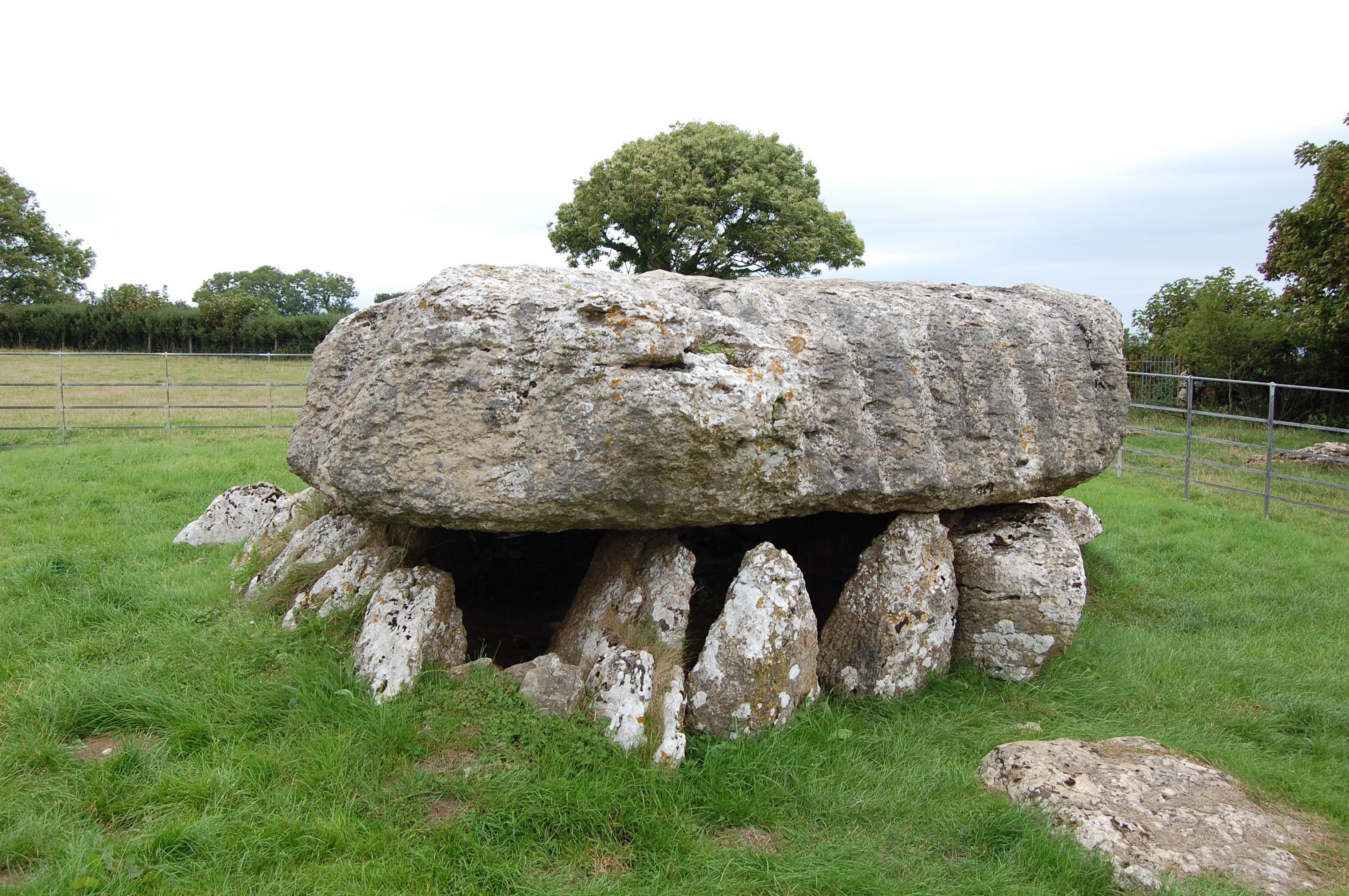One-Planet-Parent -Lligwy-burial-chamber-Isle-of-Anglesey