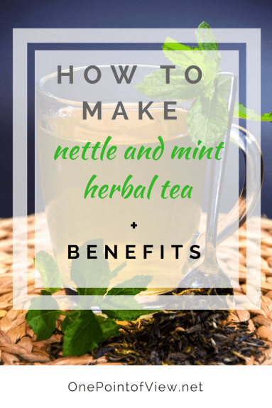 How to make nettle and mint herbal tea-OnePointofView.net