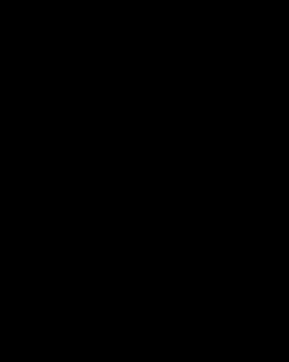 spring home decor-black-white flowers