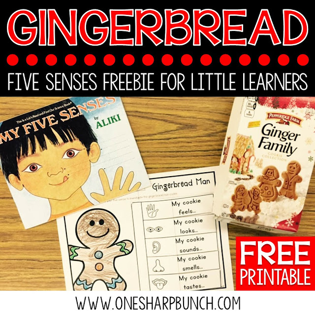 Investigate gingerbread cookies using this FREE gingerbread man five senses activity... perfect for Christmas in the classroom! Also great for practicing adjectives!