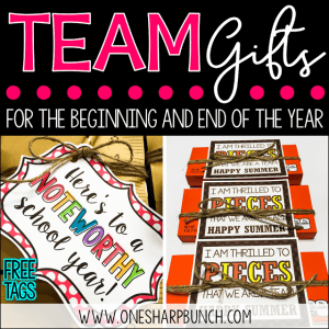 Team Gifts for the Beginning of the Year and End of the Year