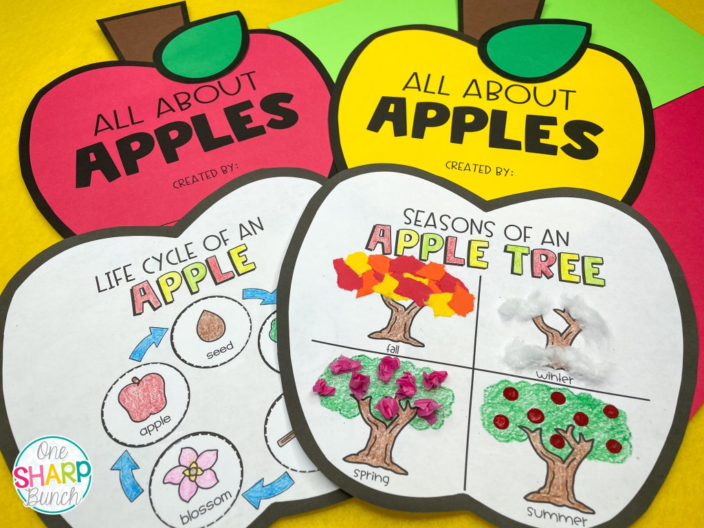 Use these 20 apple investigation activities to integrate literacy, math, science and social studies as you learn all about apples! These simple apple crafts for kids and hands-on apple science experiments will help keep your kindergarten and first grade students engaged. They'll learn about the life cycle of an apple, seasons of an apple tree, oxidation of an apple and more!