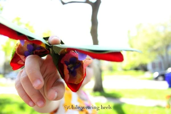 butterfly 060