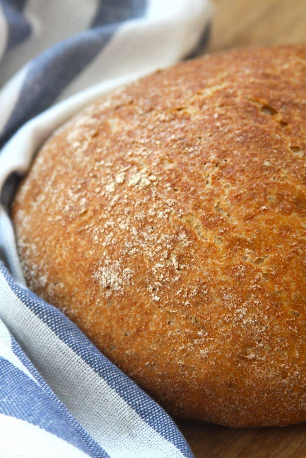 Whole Wheat No-Knead Bread Recipe (she: Maria)
