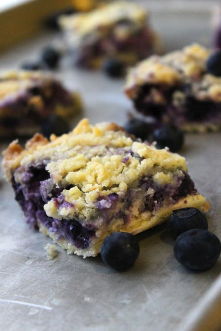 Easy Blueberry  Bars - to take away the winter blues!   @foodapparel