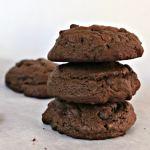 Chocolate Chocolate Chip Cookies beyondthechickencoop.com