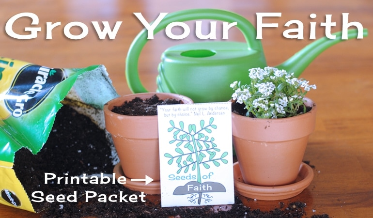 If you love Spring as much as we do at our house, you are going to love this family night lesson! It is all about growing faith in Jesus Christ. He created this beautiful world that we live in. Having faith in Jesus is the first principle of the gospel. It is the most important thing we can teach our children. Get the whole lesson at www.orsoshesays.com.