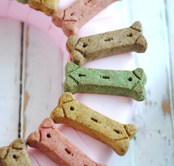 Puppy party dog bone wreath