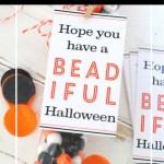 Halloween Beading Kit