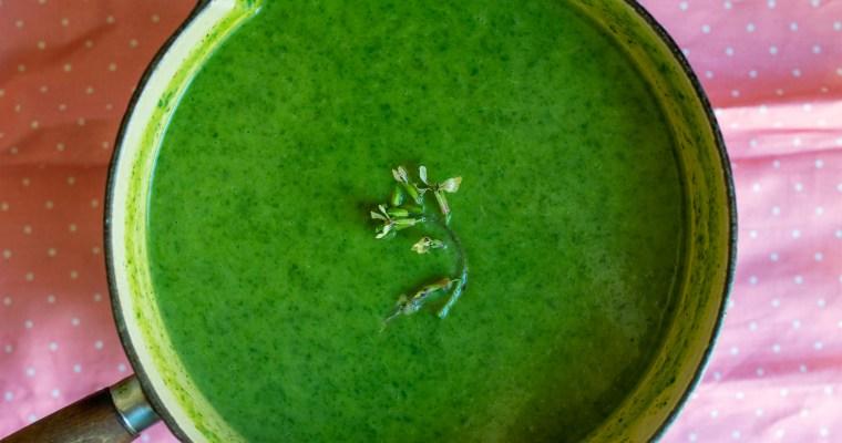 A green soup