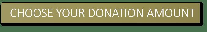 choose-donation-amount