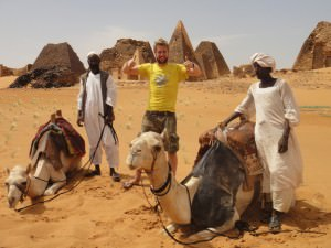 camels in Sudan