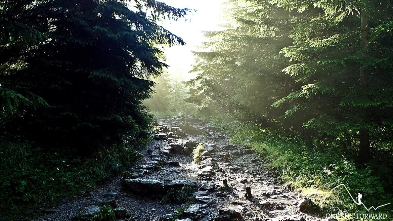 Dolina Jaworzynki - szlak dojściowy na Halę Gąsienicową