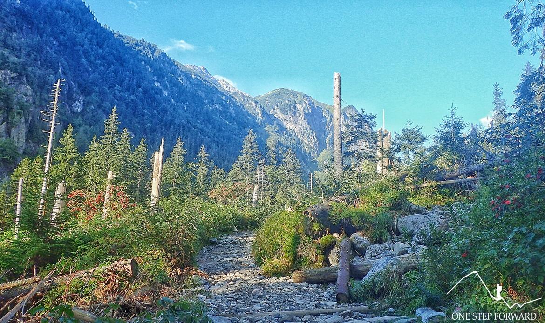 Dolina Roztoki - pierwsze widoki na trasie