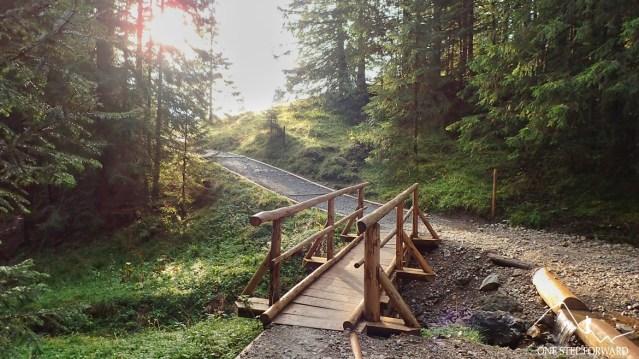 Mostek na Złotym Potoku - podejście na Rusinową Polanę